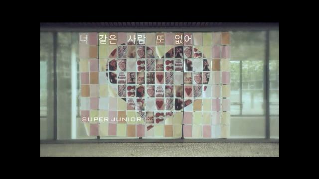 [MV] Super Junior - No Other [Eng sub].mp4_snapshot_00.01_[2013.09.14_20.18.18]
